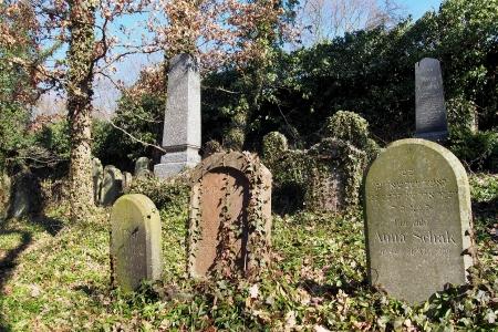 Židovský hřbitov v Kosově Hoře_69