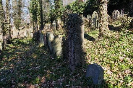 Židovský hřbitov v Kosově Hoře_70