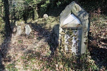 Židovský hřbitov v Kosově Hoře_73
