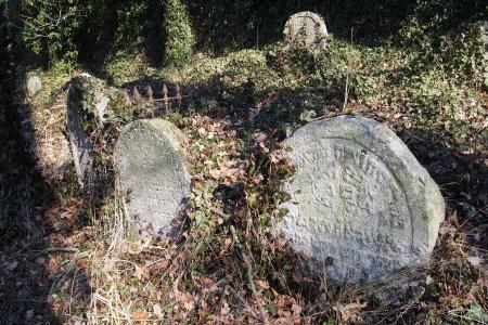 Židovský hřbitov v Kosově Hoře_74