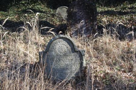 Židovský hřbitov v Kosově Hoře_75