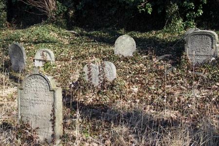 Židovský hřbitov v Kosově Hoře_76