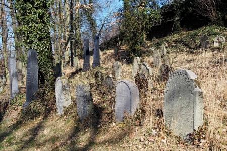 Židovský hřbitov v Kosově Hoře_77