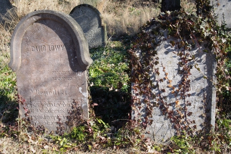 Židovský hřbitov v Kosově Hoře_78