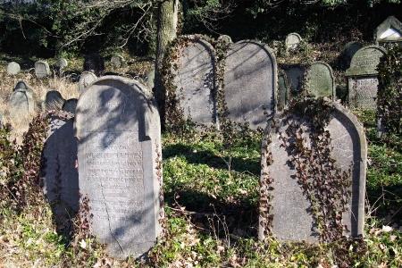 Židovský hřbitov v Kosově Hoře_79