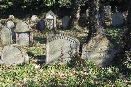 Židovský hřbitov v Kosově Hoře_80