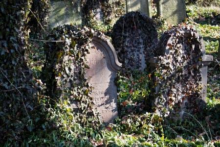 Židovský hřbitov v Kosově Hoře_81
