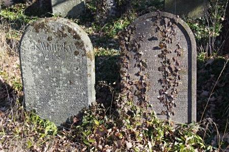 Židovský hřbitov v Kosově Hoře_83