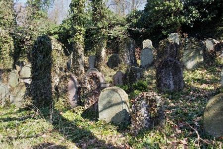 Židovský hřbitov v Kosově Hoře_85