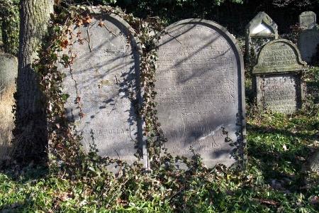 Židovský hřbitov v Kosově Hoře_86