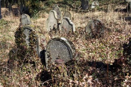 Židovský hřbitov v Kosově Hoře_88