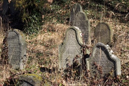 Židovský hřbitov v Kosově Hoře_89
