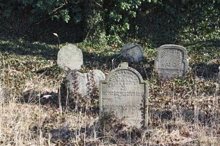 Židovský hřbitov v Kosově Hoře_90