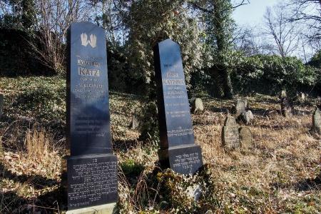 Židovský hřbitov v Kosově Hoře_93