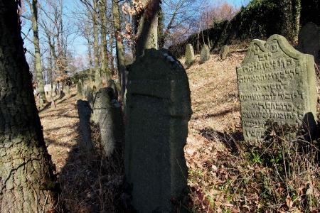 Židovský hřbitov v Kosově Hoře_95