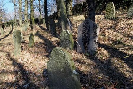 Židovský hřbitov v Kosově Hoře_96