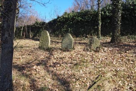 Židovský hřbitov v Kosově Hoře_97