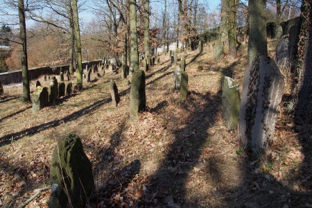 Židovský hřbitov v Kosově Hoře_98