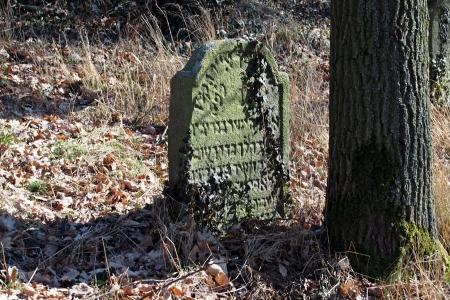 Židovský hřbitov v Kosově Hoře_99