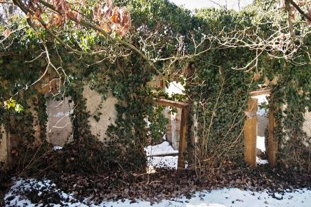 Židovský hřbitov v Kosově Hoře_9