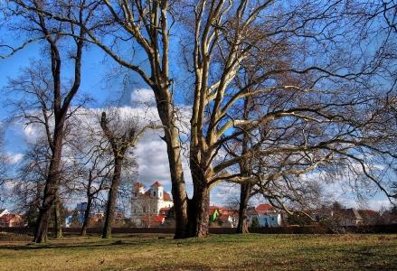 Zámek a park Veselí nad Moravou_35